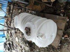 塑料化粪池和净化槽的区别
